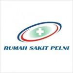 logo RS PELNI